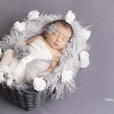 újszülött fotózás budapesten